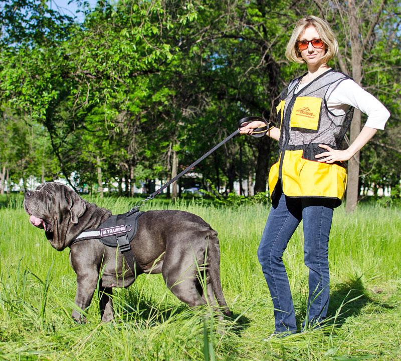 Veste sans manche de dressage chien «Entraînement en plein